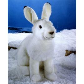 ユキウサギの画像 p1_8